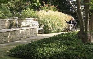 Jardines curativos