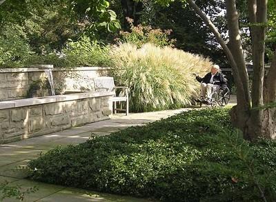 Therapeutic Gardens - Healing Gardens