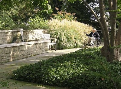 Jardines Terapéuticos – Healing Gardens