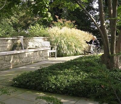 Jardines Terapéuticos - Healing Gardens