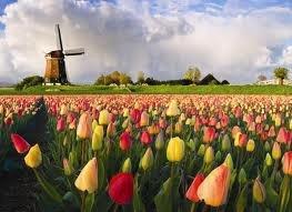 Abre Floriade 2012, el mayor evento de horticultura y medio ambiente del mundo