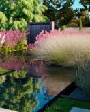 Jardines robados…