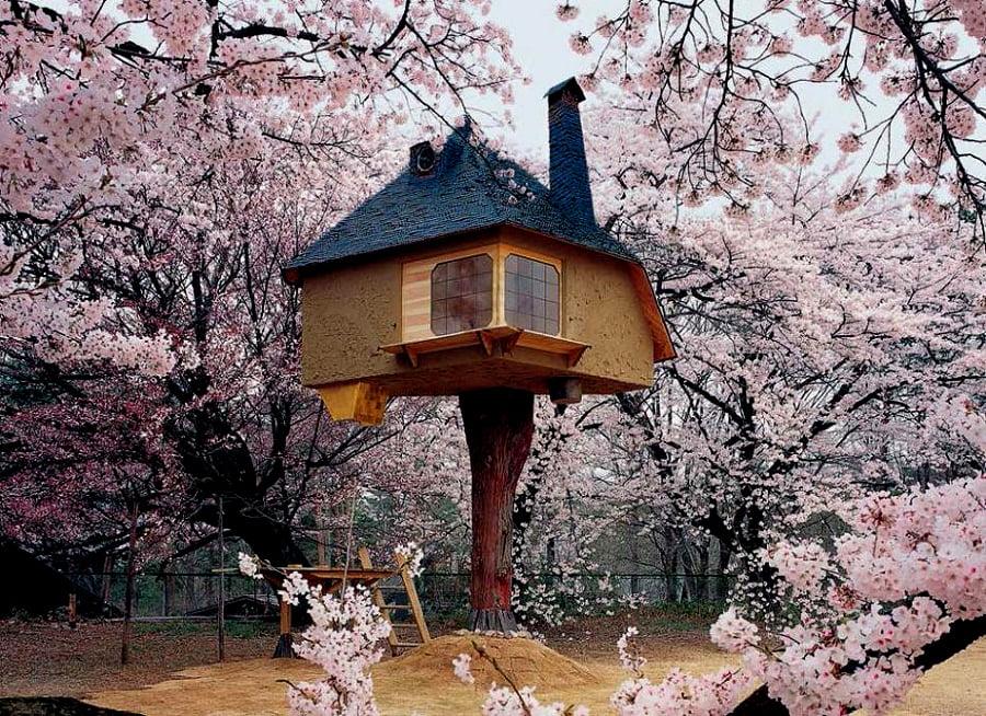 house tree 9 (1)