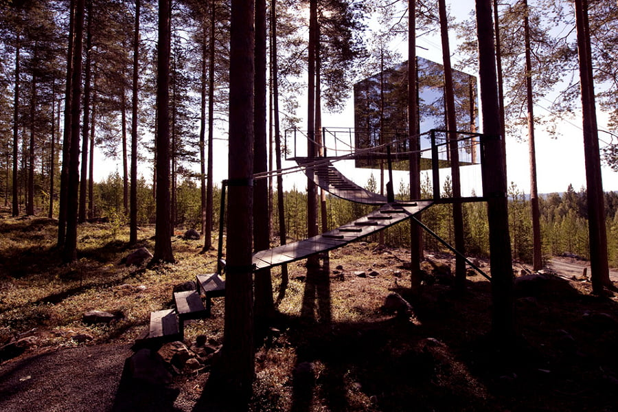 tree house 5 (1)