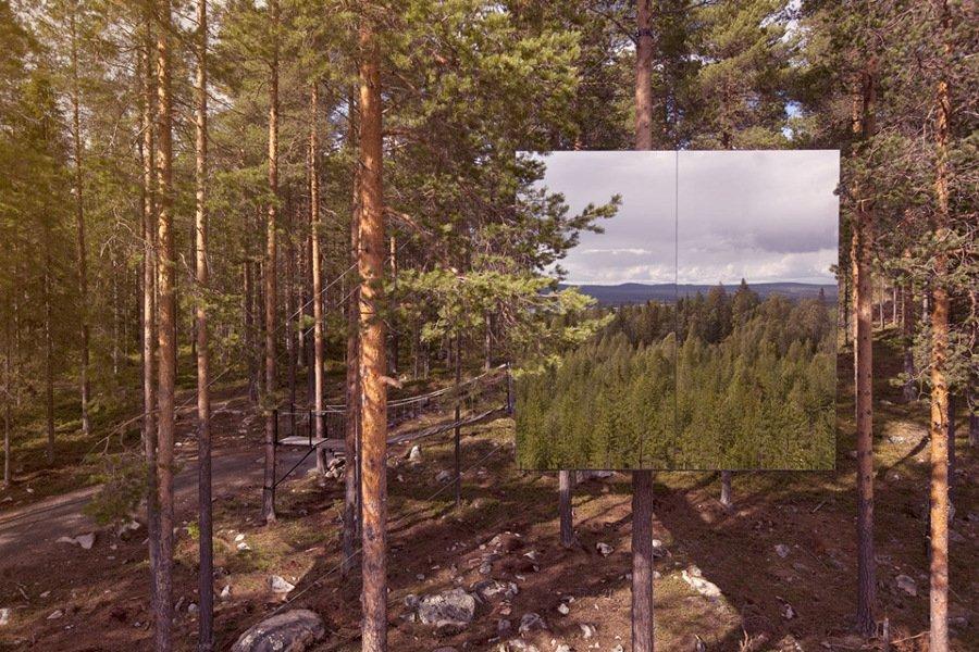 tree house 5 (2)